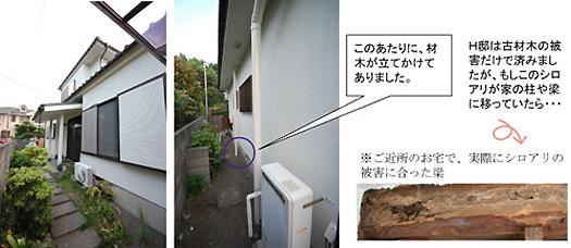 外壁塗装及びシロアリ診断工事